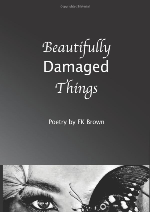 Beautiful Damaged Things